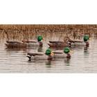 Avian-X Avian-X Topflight Mallards Open Water Series (4 Drakes/2 Hens)