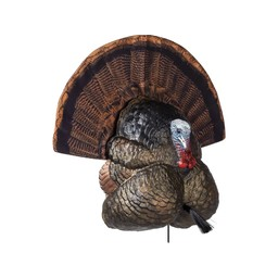Flextone Thunder Creeper Strutter Turkey Decoy
