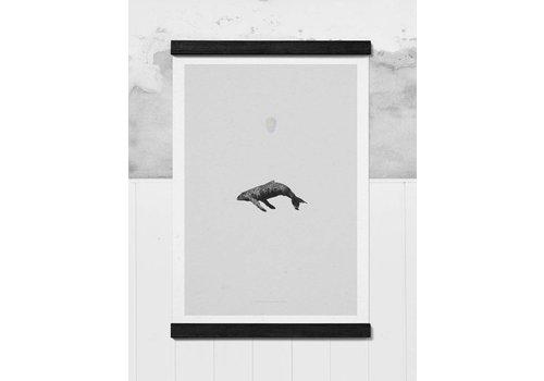 Paper Collective Whale Reprise