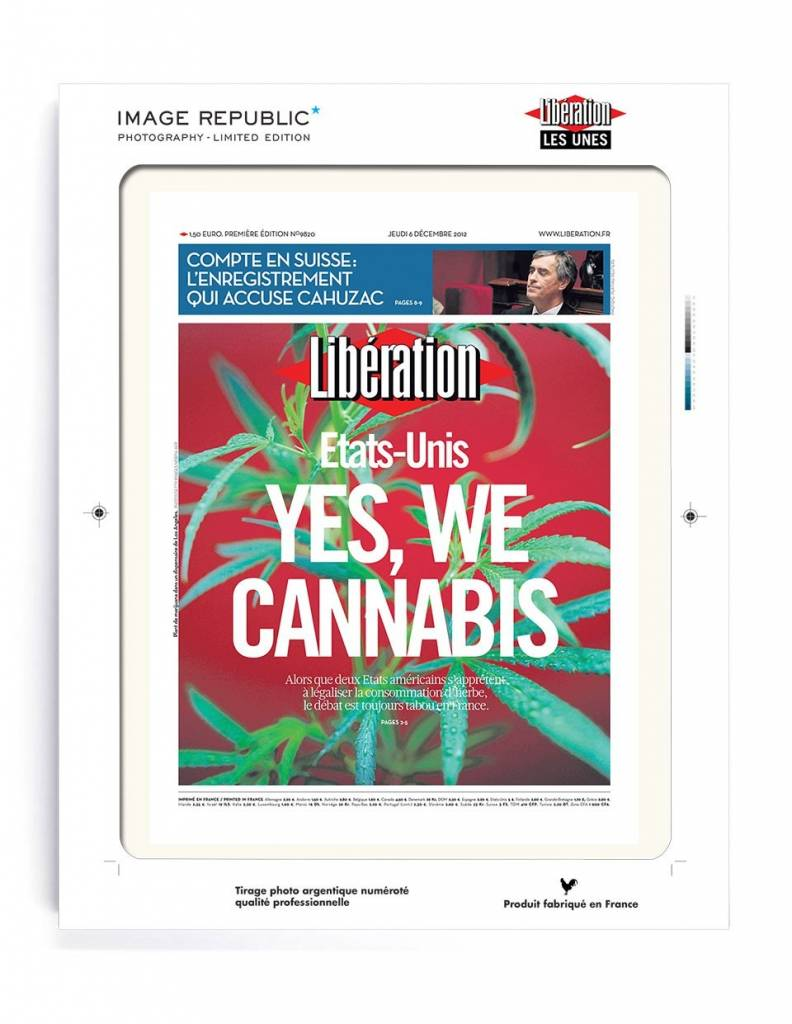 yes we cannabis Yeswecannabisorg is tracked by us since july, 2017 all this time it was owned by marcelo sardina of yeswecannabis, it was hosted by godaddycom llc yeswecannabis has the lowest google pagerank and bad results in terms of yandex topical citation index.