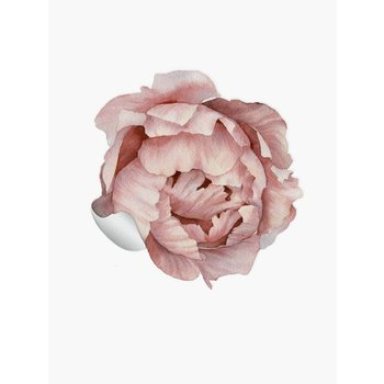 PaperMint Peony Sticker Medium