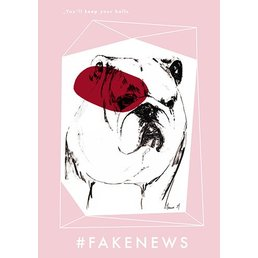 Manue M Poster Fake News #4