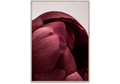 Paper Collective Peonia 01 Print