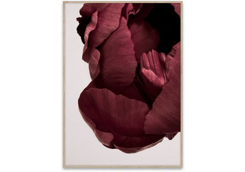 Paper Collective Peonia 02 Print