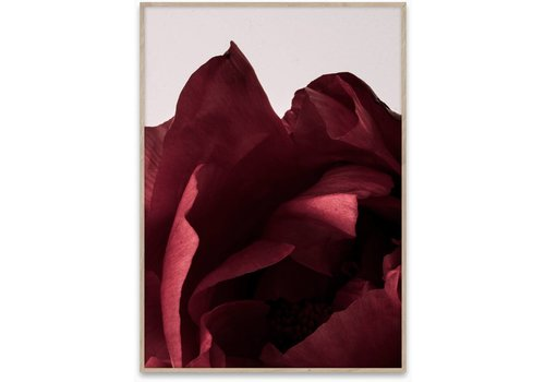 Paper Collective Peonia 03 Print
