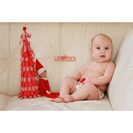Dec 2 Holiday Mini Sessions with Life's Work Photography & Birth Services