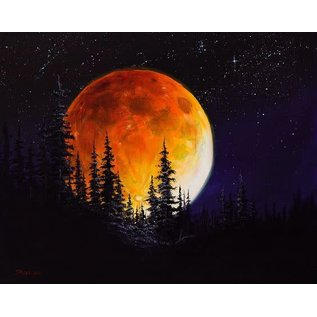 Paint class for youth ages 7-16  Feb 17 2pm