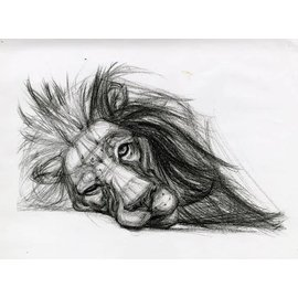 FUNdamental drawing skills (series of 4, March29-April19)