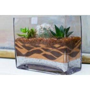 Little Miss Fancy Plants DIY Fancy Plants- Sand Art June 28