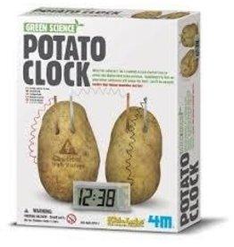 Toysmith 4M Green Science Potato Clock Activity Kit