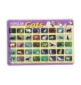 Castle Toys Inc Painless Learning Popular Cats Placemats