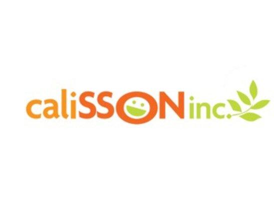 Calisson Inc
