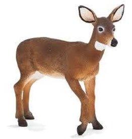 Mojo White Tailed Deer Doe