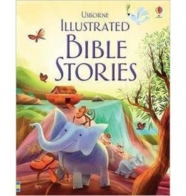 Educational Development Corporation Usborne Issustrated Bible Stories Book