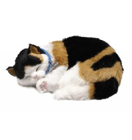 88 Unlimited Perfect Petzzz Calico Cat