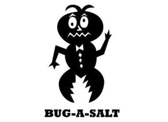 Bug A Salt