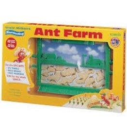Everest Wholesale Uncle Milton Stem Ant Farm