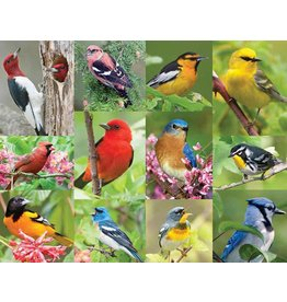 Springbok Puzzles Springbok Puzzle 500 Piece Birds of a Feather