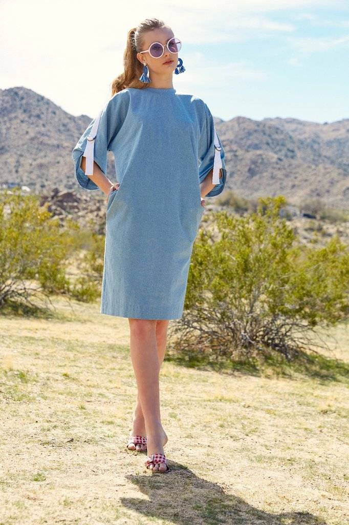 Third Ribbon Sleeve Dress
