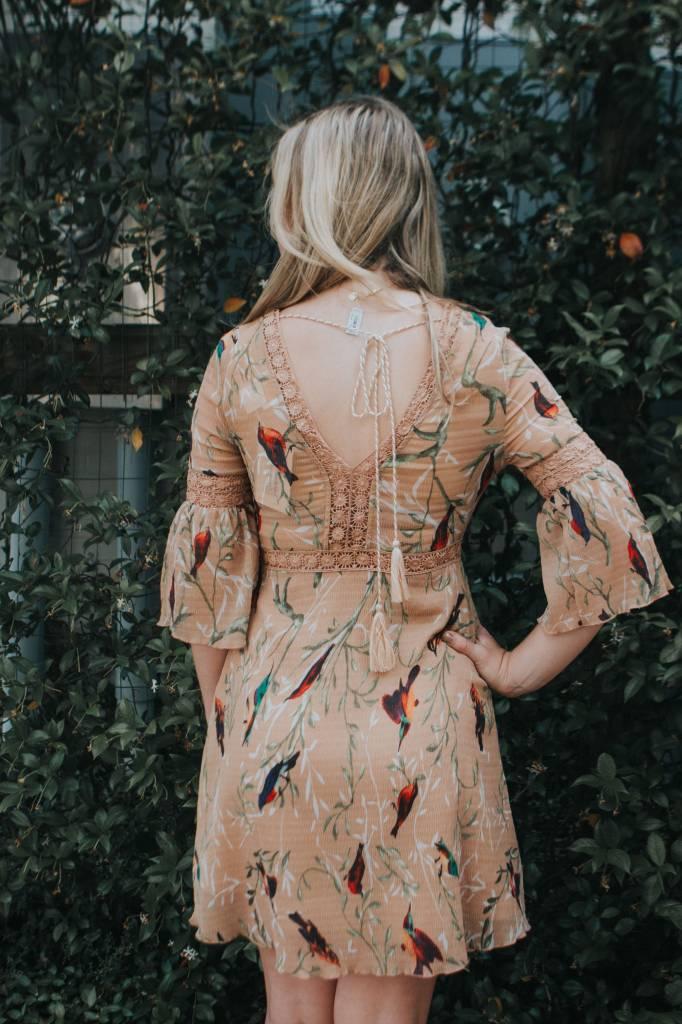 FOXIEDOX HUMMINGBIRD DRESS