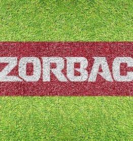 U-Stencil Arkansas Razorback RAZORBACKS Lawn Stencil & Paint - DS
