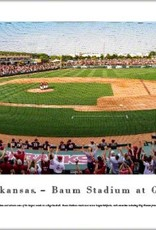 Blakeway Arkansas Razorback Baseball - Bagged