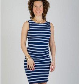 Momzelle Megan Blue stripe nursing dress