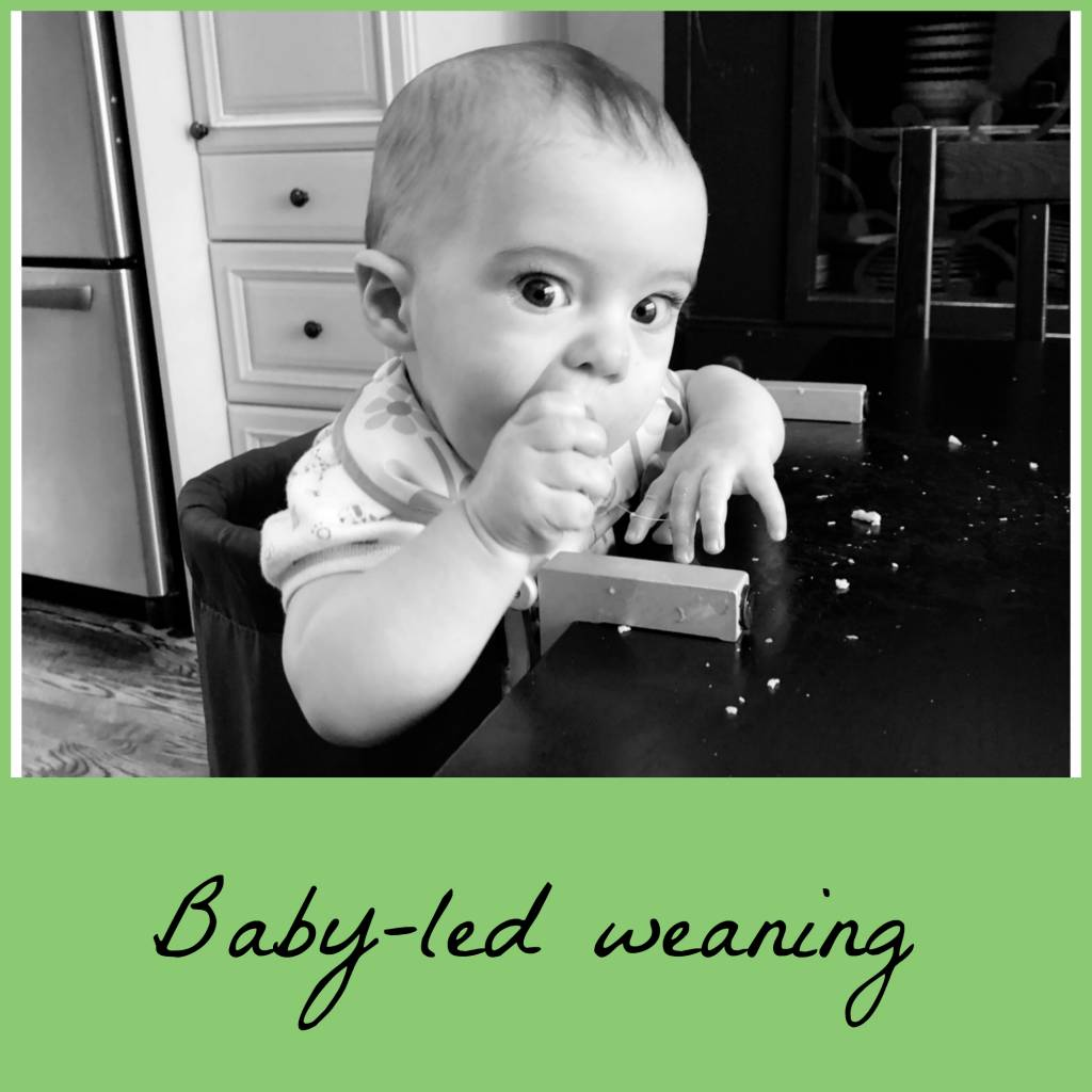 Introducing Solids Q & A with Michelle Evans, RD