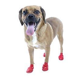 PAWZ Pawz Waterproof Disposable Dog Boots Small, 12pk