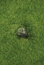 Frontline Gaming FLG Mats: Grasslands 1 6x4'