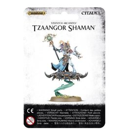 Games Workshop Tzaangor Shaman
