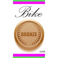 Bronze Bike Tune Up Gift Certificate