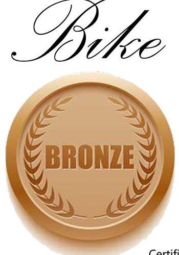 Bronze Bike Tune-Up Single Speed Gift Certificate