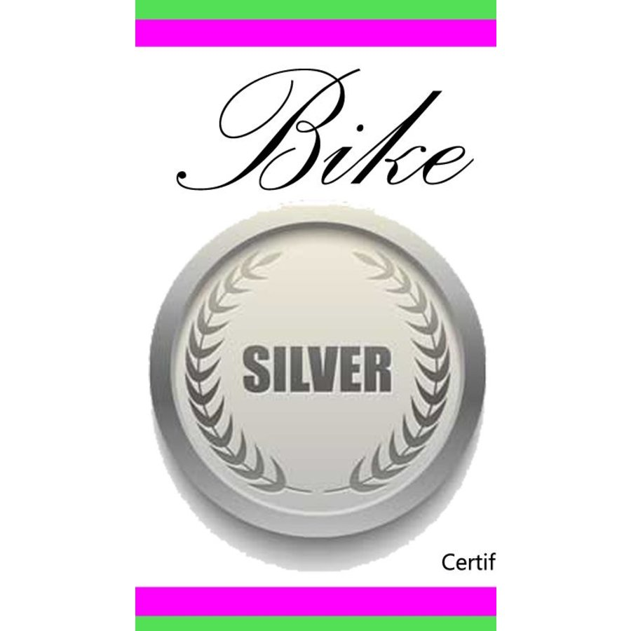 Silver Bike Tune Up Drop Bar Gift Certificate