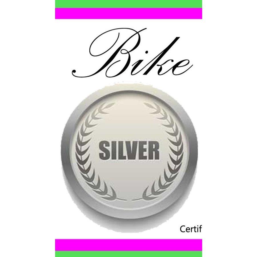 Silver Bike Tune Up Flat Bar Gift Certificate