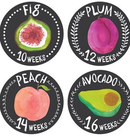 Lucy Darling Growing Garden Monthly Stickers