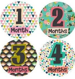 Lucy Darling Little Lady Monthly Stickers