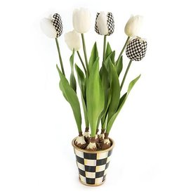 MacKenzie-Childs Courtly Check Potted Tulips