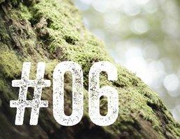 #06 AGRUMES BORÉALE 155 G