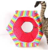 The Cat Ball Rainbow Bright