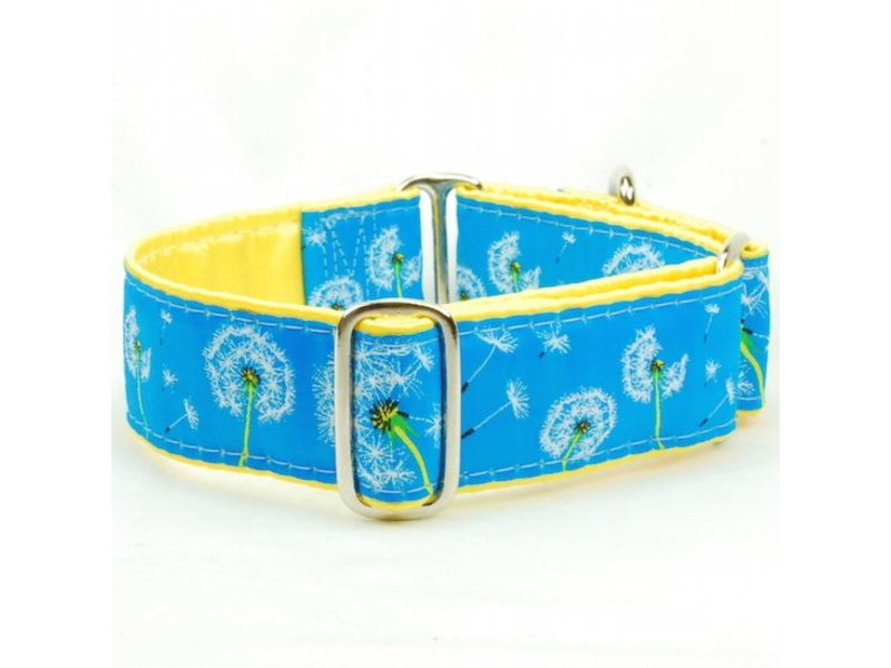 2 Hounds Design Dandelion Martingale Collar