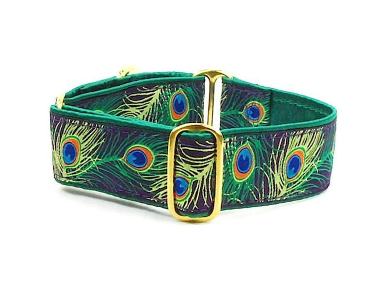 2 Hounds Design Paradise Found Peacock Martingale Collar