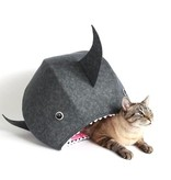 The Cat Ball Great White Shark