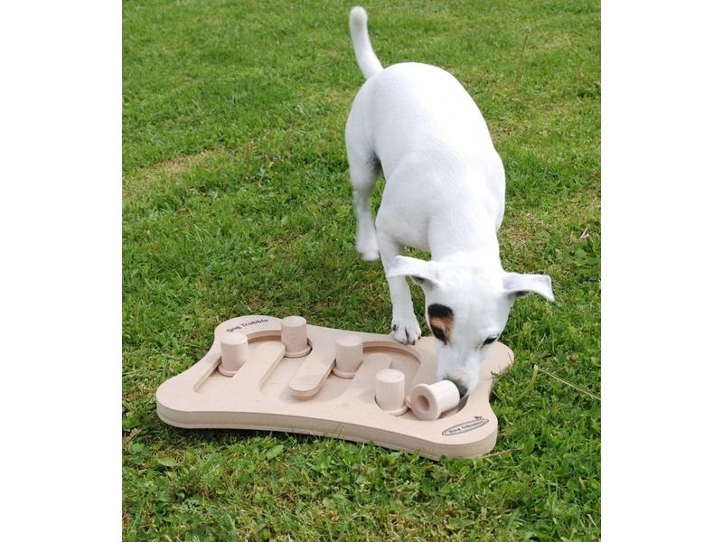 Nina Ottosson Dog Trubble Puzzle