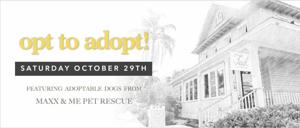 Opt to Adopt October 29th