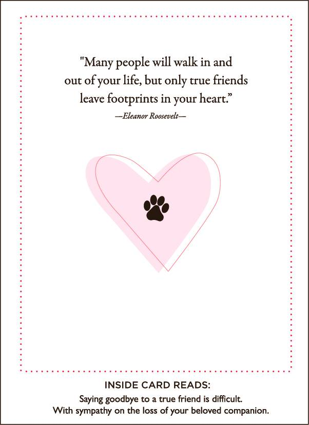paws and love pet sympathy card feed pet purveyor