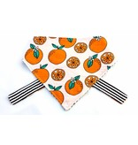 Florida Oranges Pet Bandana