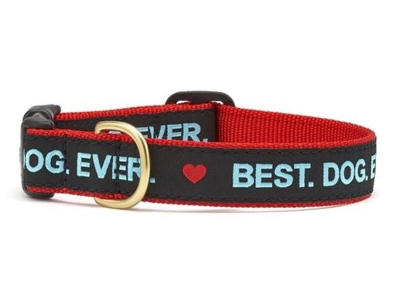 Up Country Dog Collar Best. Dog. Ever.
