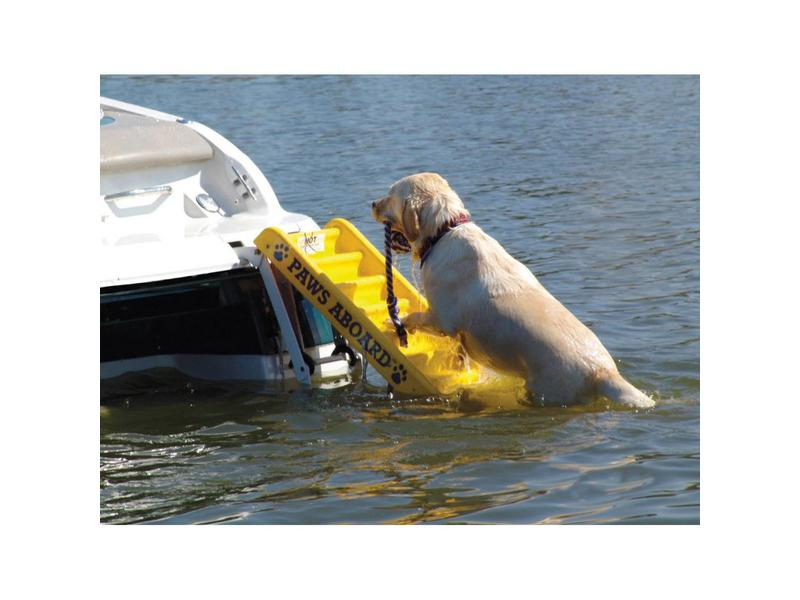 Paws Aboard Boat Ladder for Dogs
