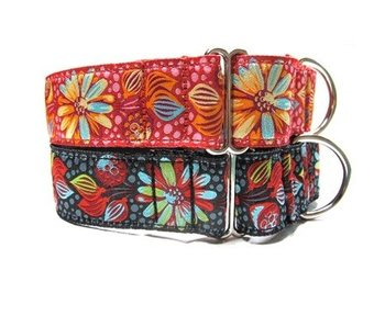 Sprout Martingale Combo